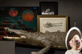 Exposició 'El Prodigi'