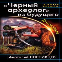 «Черный археолог» из будущего. Дикое Поле (аудиокнига)