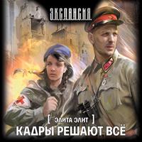 Аудиокнига Кадры решают всё Роман Злотников