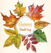 Autumn book Tag