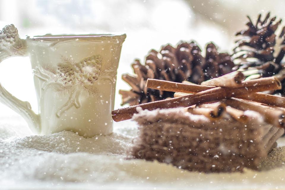 pine-cones-2110283_960_720