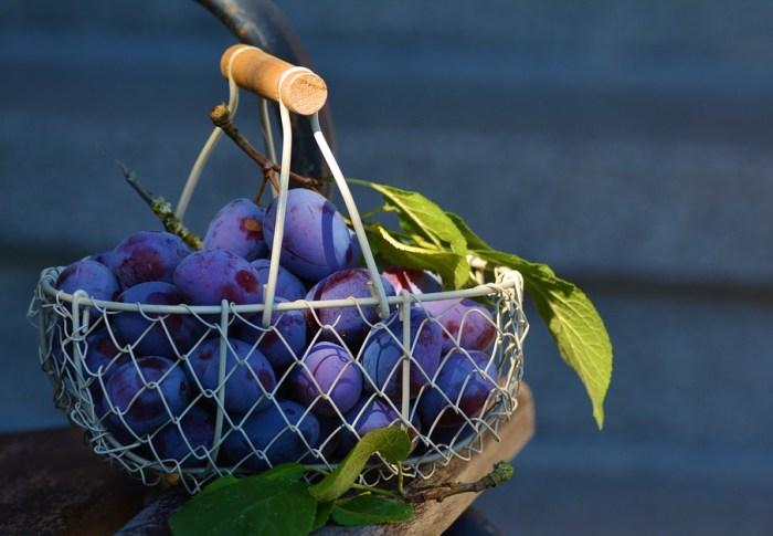 Se battre pour des prunes