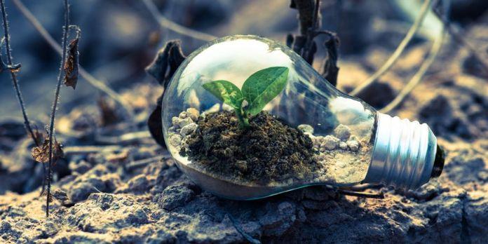 ClimateLaunchpad: deux startups marocaines se distinguent