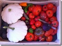 panier de légumes (2)