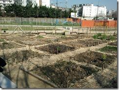 jardins partagés de courbevoie