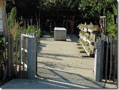 Visite des jardins partagés