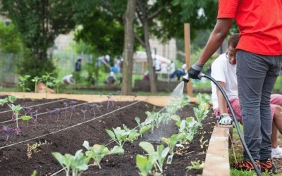 Equitable Water Access for Chicago Food Security