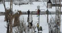 spielplatz_winter