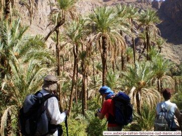 Randonnées et Excursions - région de Taliouine