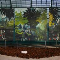 Michelle-Auboiron-expositions-Serres-d-Auteuil-Paris-2004--9 thumbnail