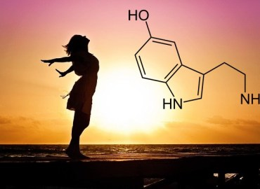 sérotonine et bonheur