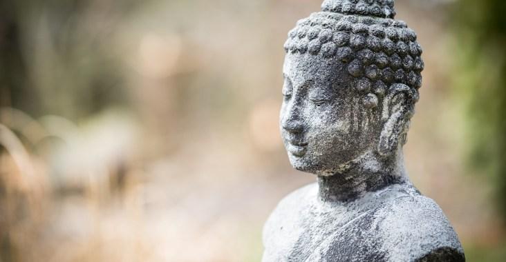 bouddha livre lecture chronique