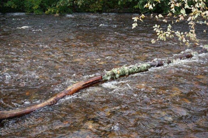 rivière-Enrick-eau-Ecosse