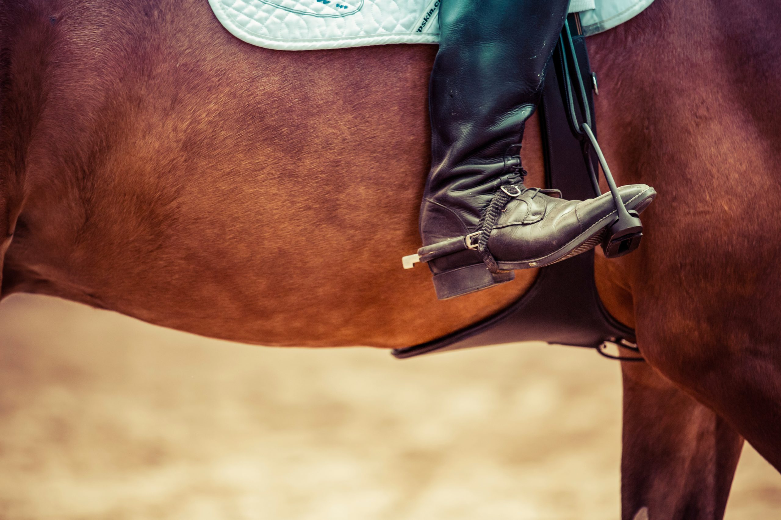 Best Western Boots for Riding Horses