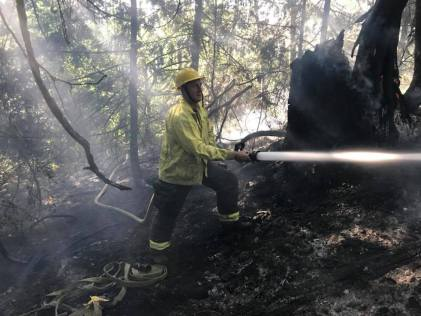 auburn wa, auburn brush fire, vrfa, valley regional fire authority, valley professional fighter, brush fire, wildfire, firefighter