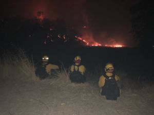 wildfire, washington wildfire, vrfa, valley regional fire authority, wildfire strike team