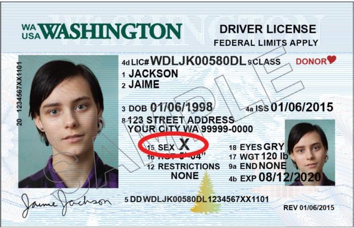 wa state sample id, gender x, lgbtq,