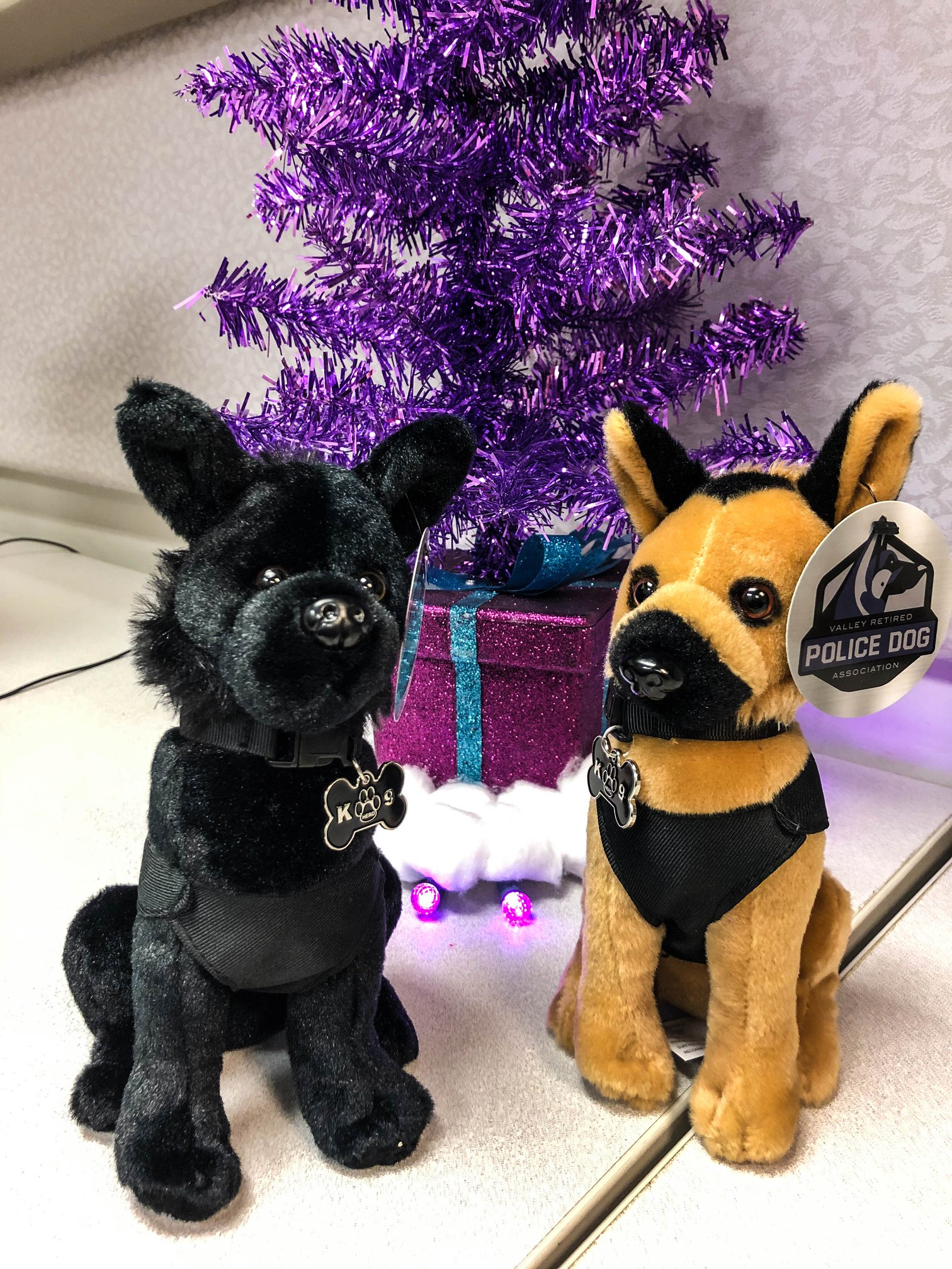 valley retired police dog association, vrpda, valley retired k9, k9 kaiser,