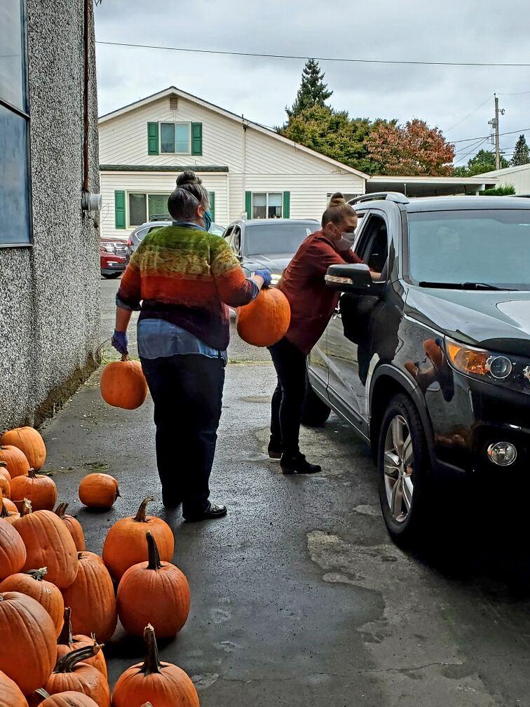 downtown auburn cooperative, pumpkin give away, pumpkin contest auburn, auburn wa downtown, downtown events auburn wa, events in auburn wa, halloween auburn wa