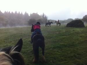mist-in-quantock-hills-on-horseback