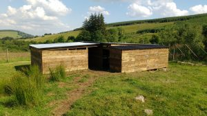 Completed sheep shelter and hay store
