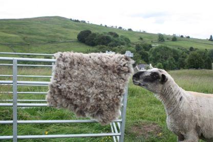 Homegrown felted fleece rug - Iona II
