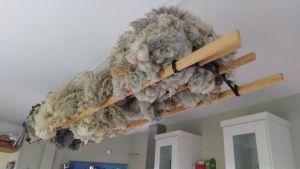 fleeces drying in kitchen