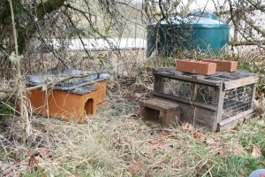 hedgehog house and feeding station