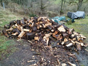 log pile chopped