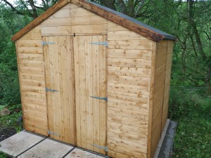 shed build 3