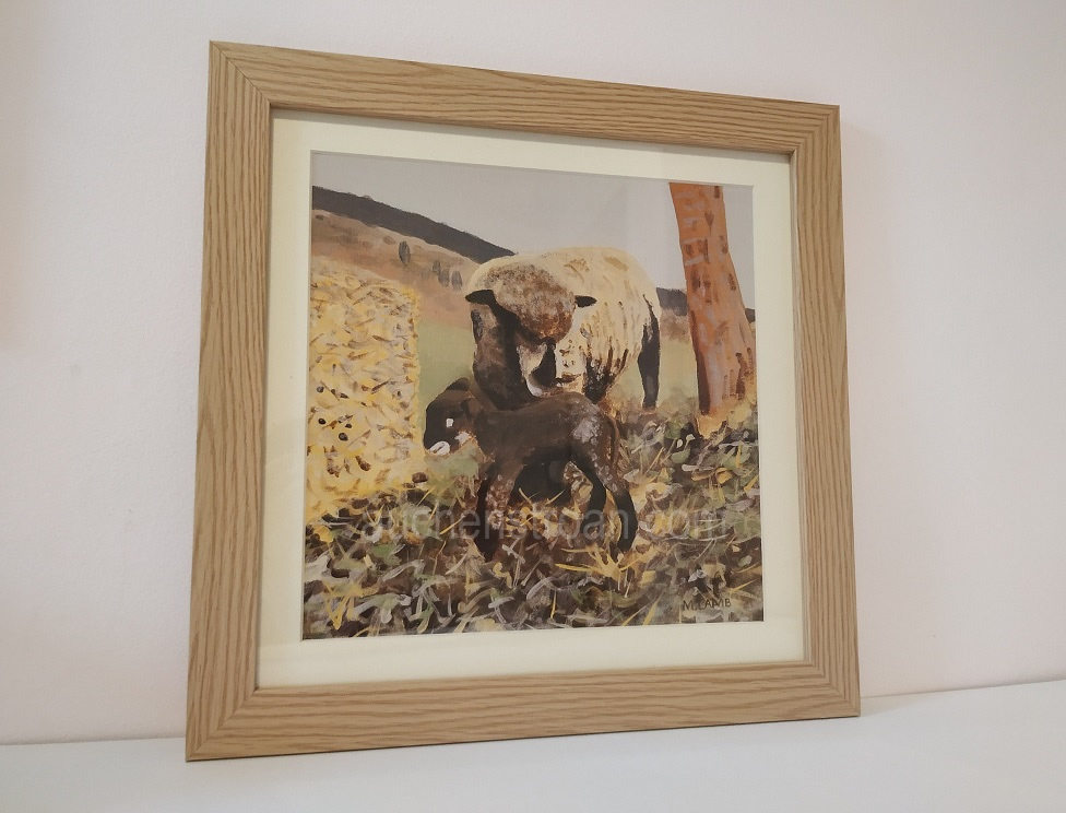 Rustic gifts - sheep in the countryside
