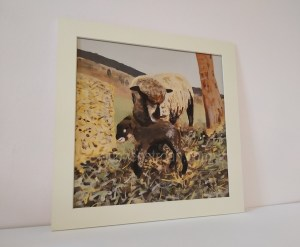 Sheep Art - Witchy & Yogi lamb mounted