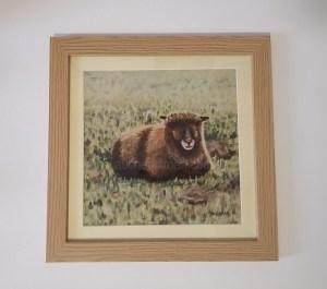 Pictures of Coloured Ryeland sheep - Yoko framed