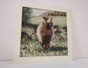Sheep gifts - sheep in the scottish countryside