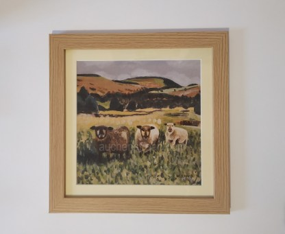 framed print - Yin Yarr & Yogi -coloured ryeland sheep