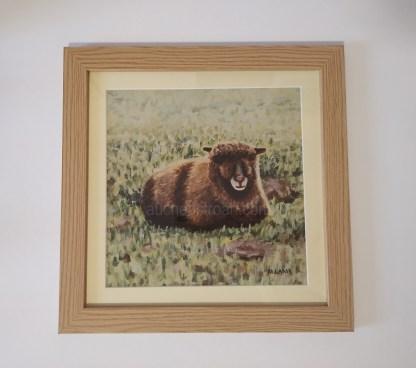 framed print - coloured ryeland sheep - Yoko