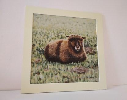 mounted print - sheep - Yoko