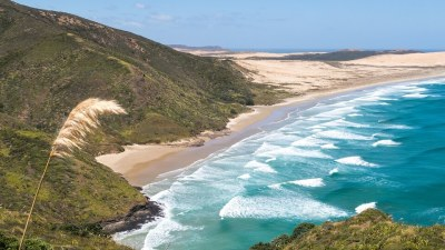 Cape Reinga, far north explorer private tour