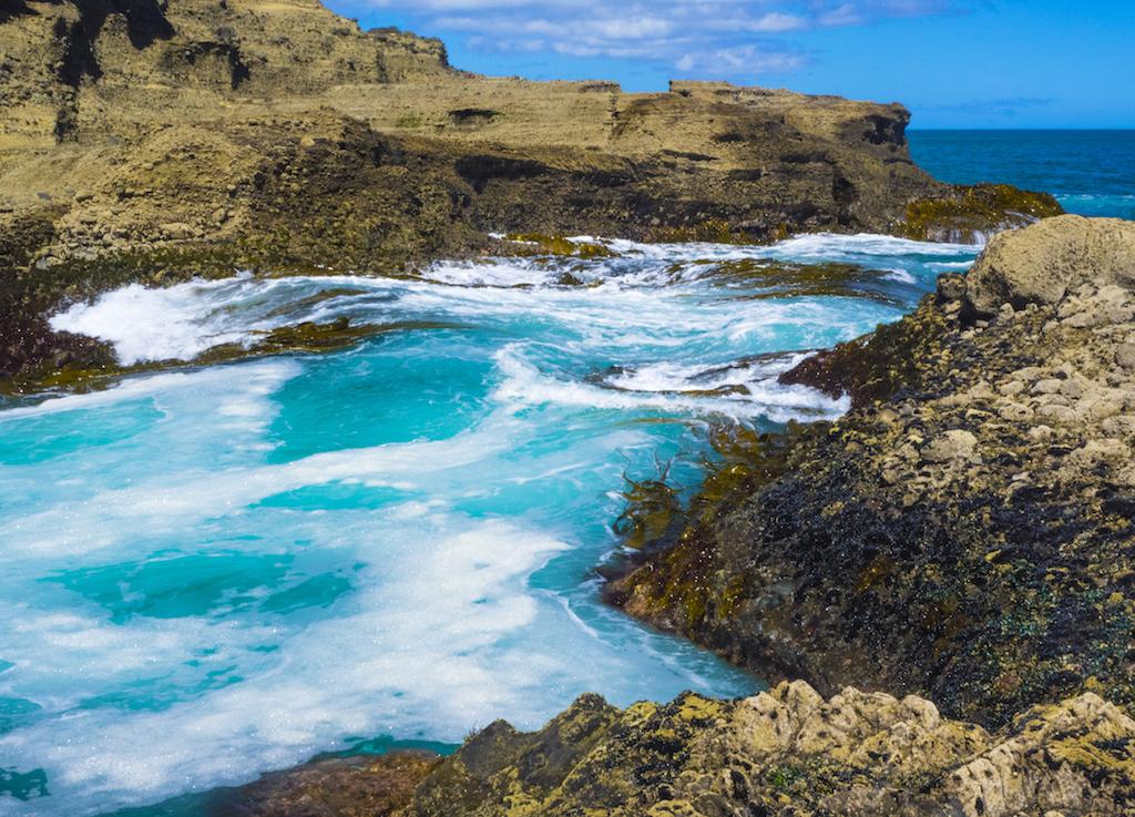 Piha Beach Rocks & Seaweed