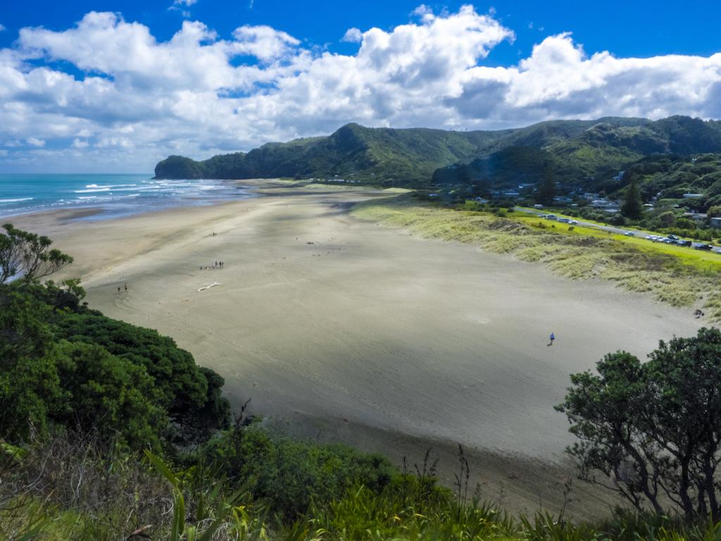 Piha Beach View - Landscape Photography Auckland