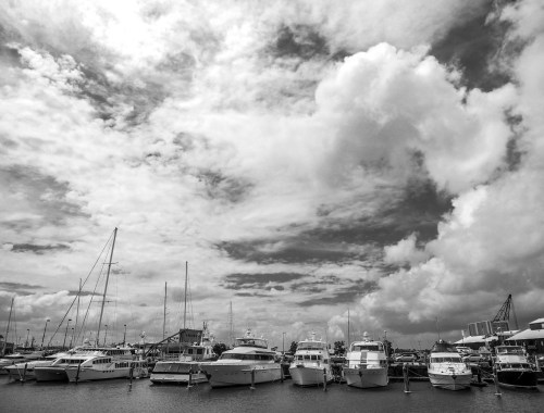 Yachts in the Viaduct Basin in Auckland Harbour