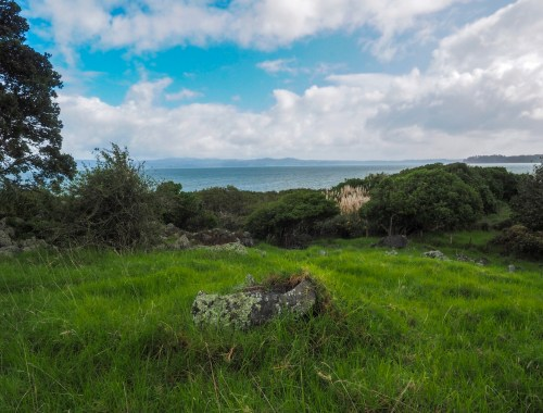 Otuataua Stonefields Landscape Photography Auckland