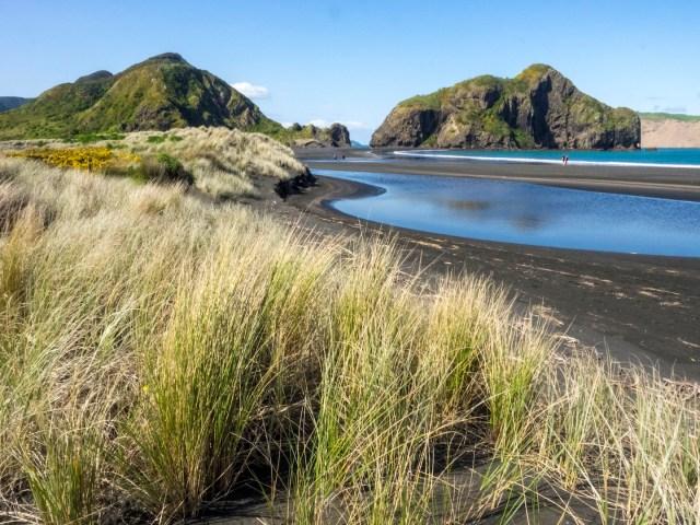 Whatipu Beach Dunes - Landscape Photography Auckland