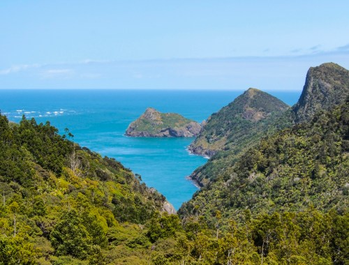 Makaka Bay Waitakere Ranges - West Auckland Landscape Photography