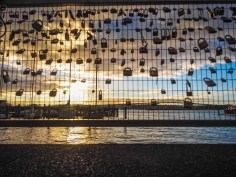 Love Locks in in Aucklands Silo Park at Sunset