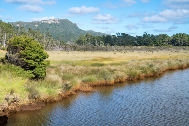Kaitoke Creek on Aotea Great Barrier Island