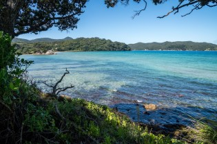 Puriri Bay in Tryphena on Great Barrier Island, Aotea