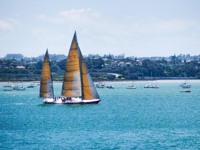 Auckland Shoal Bay Sailing - Aucklife Framed Photo Print
