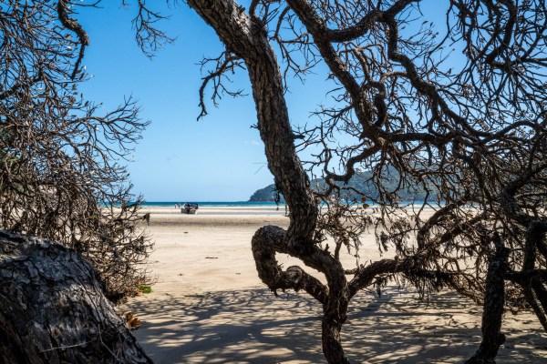 Auckland Tryphena Beach Great Barrier Island - Aucklife Framed Photo Print