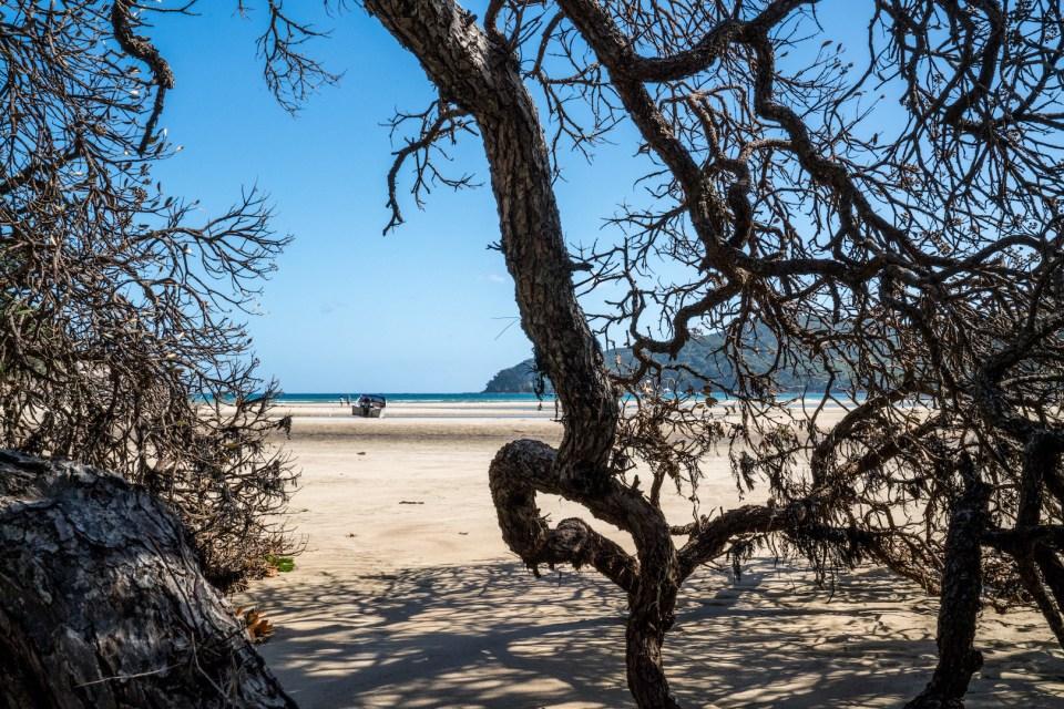 Auckland Tryphena Beach Great Barrier Island - Aucklife Photo Print